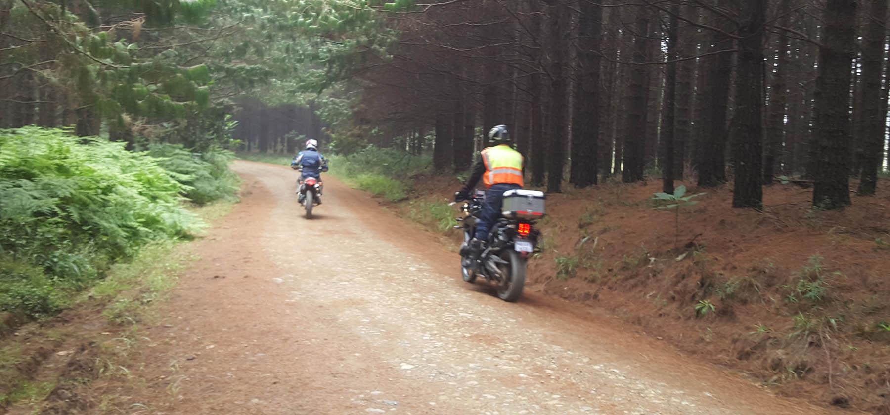 about adventure bike safaris